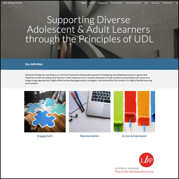 Supporting Diverse Adolescent & Adult Learners through the Principles of UDL